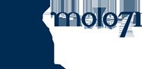 logo-molo71-s